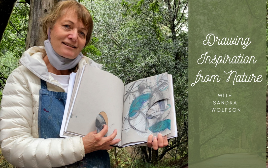 Drawing Nature with Sandra Wolfson